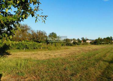 Predaj, pozemok-záhrada 2171 m2 Radvaň nad Dunajom