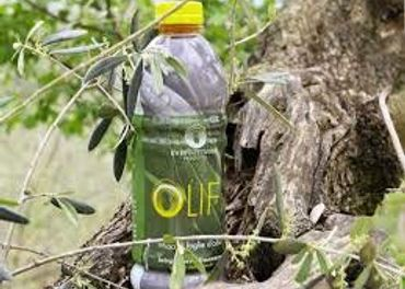 Extrakt z olivových listov a nechtíka lekárskeho