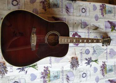 Gitar IBANEZ s príslušenstvom