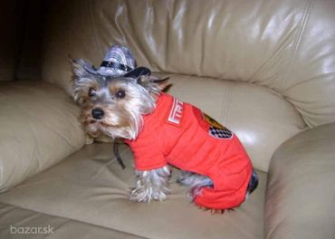 Oblečenie pre psov, overal Pirelli, XS, S, L