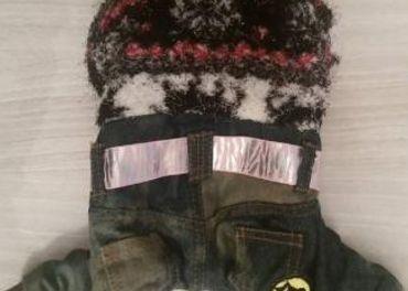 Oblečenie pre psov zimné zateplené S