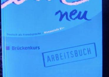 EM NEU B1+ 2008. ARBEITSBUCH. S CD
