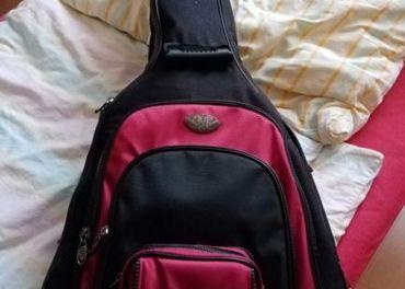Šanielka gitara Passadena