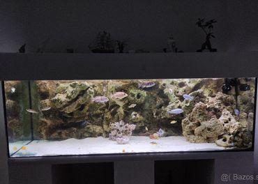Predám Akvárium Komplet 150x50x50