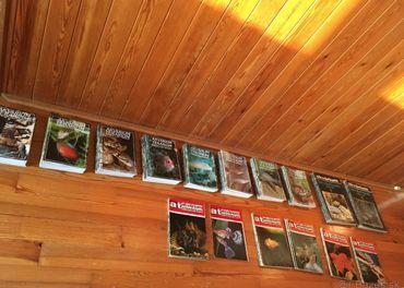 akvárium - časopisy