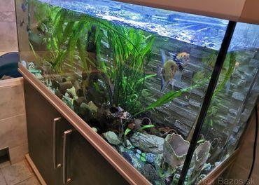 Predám akváriový set Juwel 240 litrové