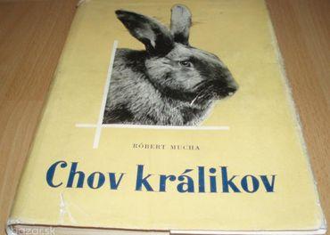 Chov králikov,