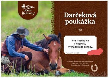 PREDANÉ - Voucher - jazda na koni - PREDANÉ