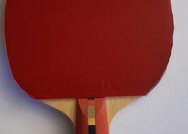 Prodám pálku na stolní tenis