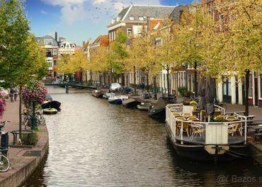 Opatrovanie Holandsko Reeuwijk (Gouda) 22.11.2020