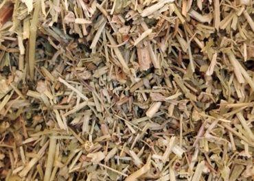 Kotvičník zemný - čaj lekarenskej kvality