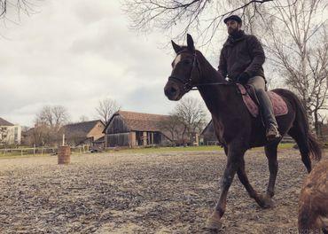 Výcvik jazdeckých a záprahových koní .