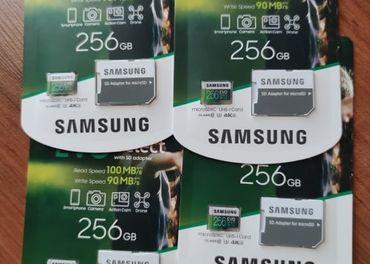 Samsung EVO Select 256 GB MicroSDXC UHS-I U3