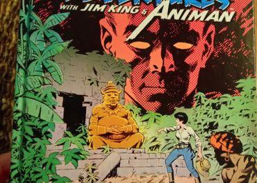 Predám knihu Wally Wood: Jungle Adventures w/ Animan