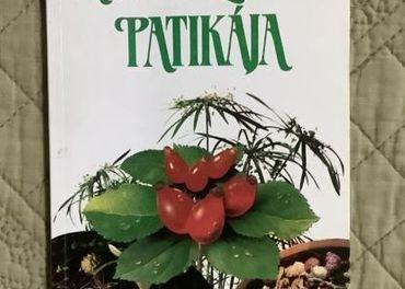 Lekáreň zdravia v maďarskom jazyku