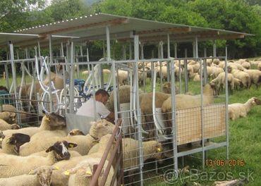 Dojáreň, stojisko, zoradište oviec pri strojnom dojení