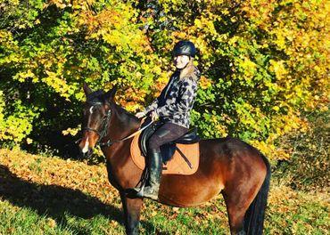Sportovní pony ,rekreace