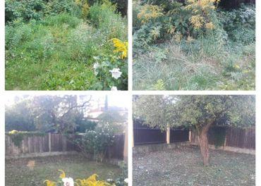 kosenie, mulčovanie trávy a náletových drevín