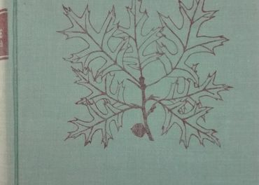 Listnaté stromy a keře našich zahrad a parků