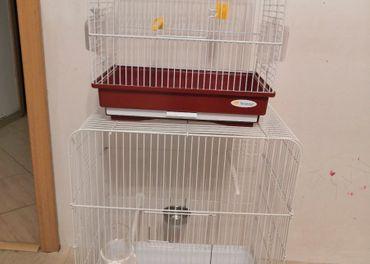 Klietky pre vtáky