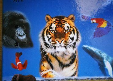 Encyklopedia Zivot zvierat
